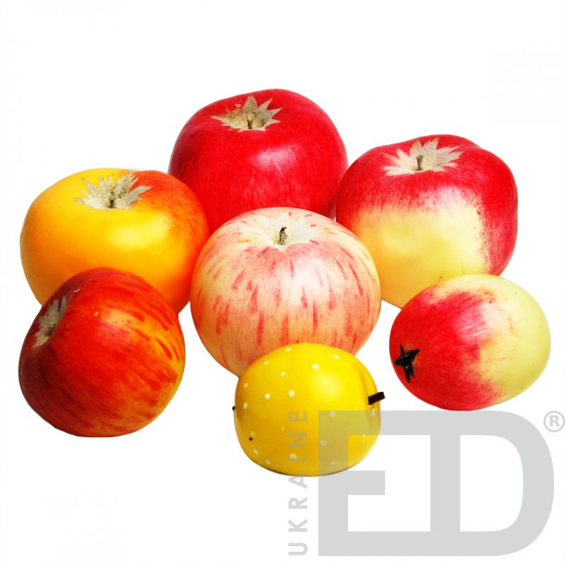 """Муляжі """"Дика форма та культурні сорти яблук"""""""