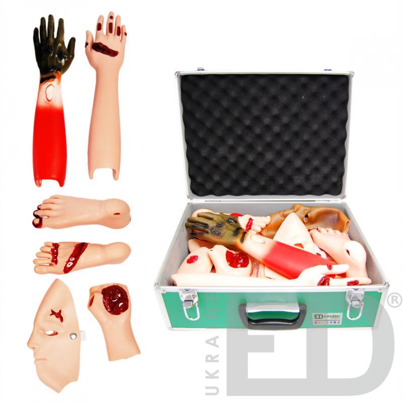 Набір моделей сімуляций травм