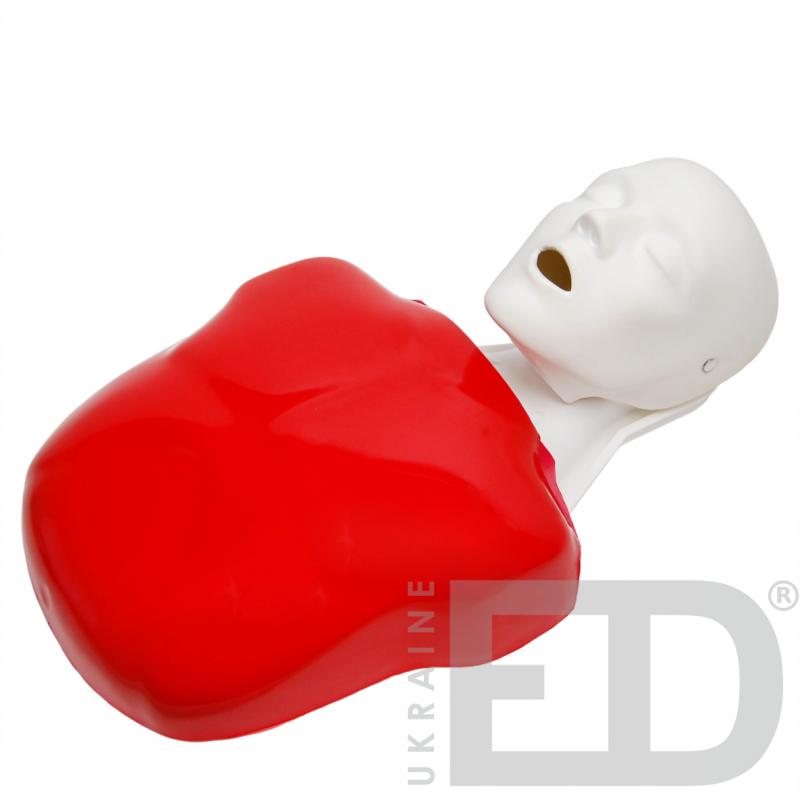 Тренажер серцево-легеневої реанімації (Реанімаційний торс дорослого)